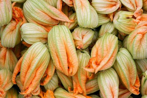 Petals Of Zucchini, Flower, Gastronomy, Kitchen