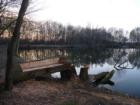 Lake, Park, Bank, Tree, Water, Pond, Idyllic, Mood