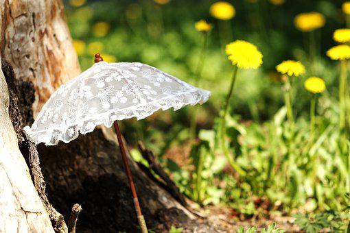 Parasol, Sun, Summer, Umbrella, Grass, Dandelion