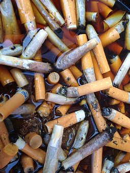 Cigarette Filter, Cigarettes, Cigarette End, Fine Food