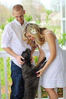 Happy Dog, Happy Family, Happy Couple, Family, Dog