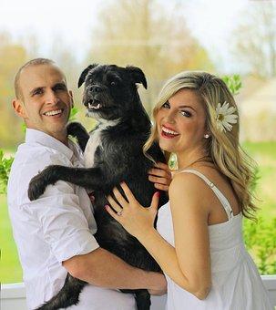 Happy Family, Dog Family, Pup, Love, Happy Couple