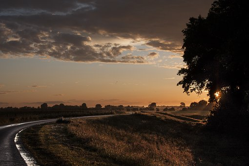 Evening, Sun, Sunset, Setting Sun, Clouds, Trees