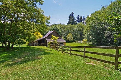 Barn, Rural, Horses, Farm, Agriculture, Countryside
