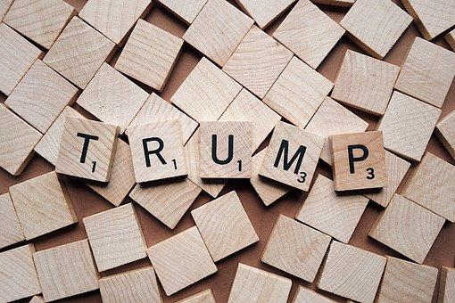 Trump, President, Politics, Donald, Political