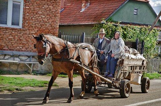 People, Horse, Wagon, Farm Wagon, Agriculture