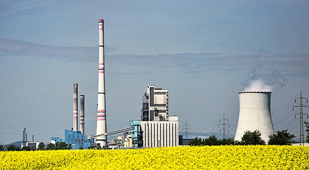 Biofuel, Power Station, Rapeseed