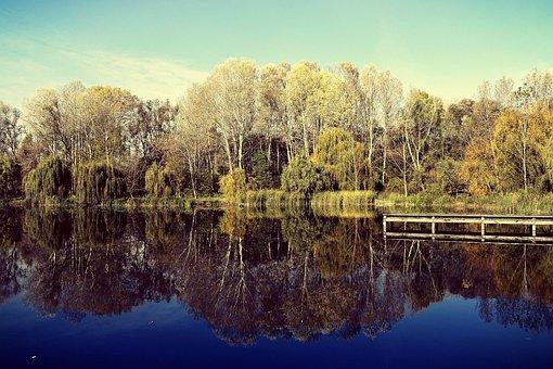 Reflection, Nature, T, Lake, Waterfront, Water