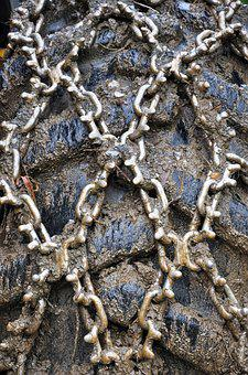 Tire, Chains, Wheel, Equipment, Metal, Rubber, Vehicle