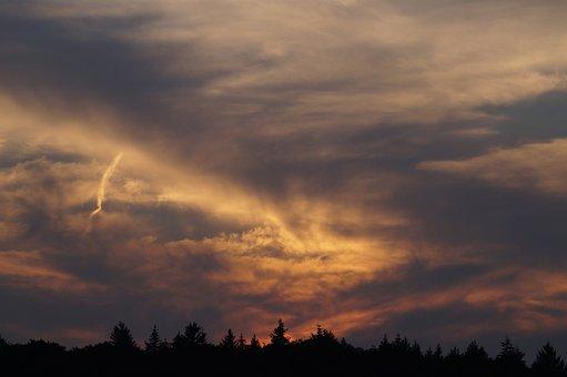 Evening Sun, Abendstimmung, Waldsee, Forest, Sunset