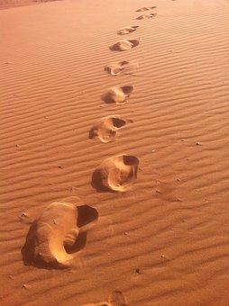 Morocco, Traveling, Travel, Africa, Desert, Camel