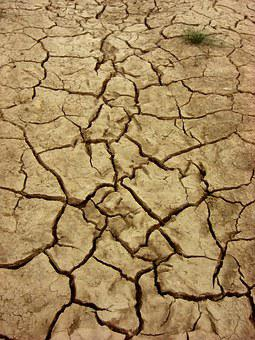 Dry, Earth, Dehydrated, Ground, Cracks, Nature, Drought