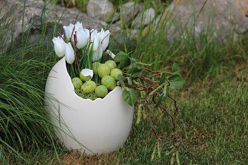 Easter, Egg Shells, Bird Eggs, Shell, Spring