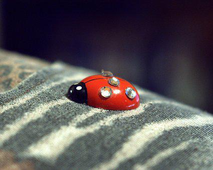 Beetle, Artificial, Decoration, Textile, Small, Red