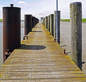 Investors, Web, Husum Outer Harbour, Wadden Sea, Ebb