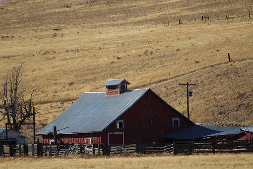 Red Barn, Country, Rural, Farm, Agriculture