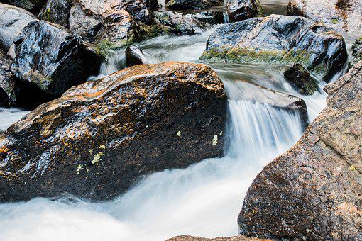 Water, Fall, Stream, Nature, Outdoor, Forest, Fresh