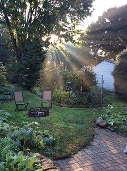 Morning Light, Garden, Sunlight, Landscape, Summer
