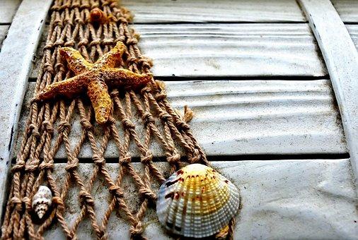 Maritime, Box, Wood, Starfish, Shell, Fishing Net