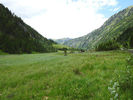 Austria, Mountains, Meadow, Forest, Nature, Landscape