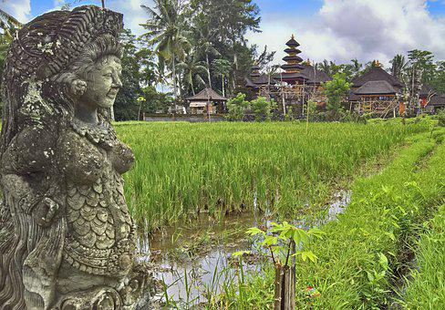 Paddy, Temple, Bali, Temple Complexes