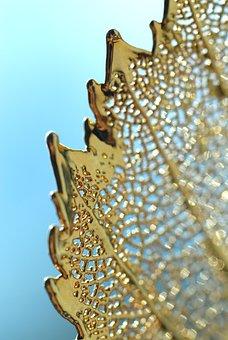 Gold, Leaf, Fragile, Design, Nature, Golden, Foliage