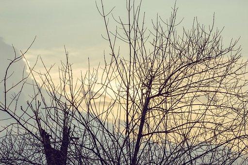 Sunset, Clouds, Pretty, Beautiful, Sky, Golden Light