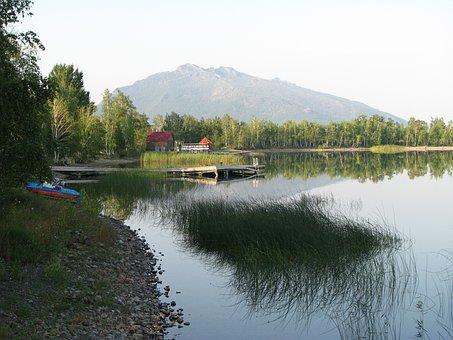 Reed, Lake, Water