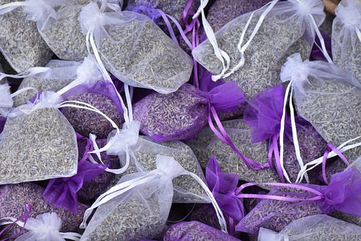 Lavender, Provence, France, Holiday, South