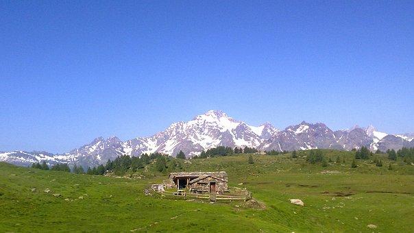 Mountain, Snow, Grass