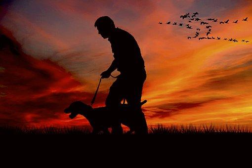 Walk, Man, Dog, Animal, Walkers, Hiking, Go, Nature