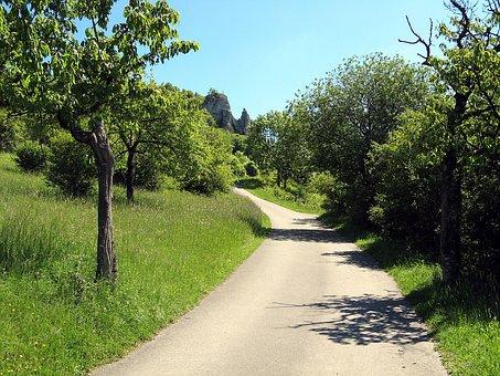 Meadow, Away, Hike, Franconian Switzerland, Tree
