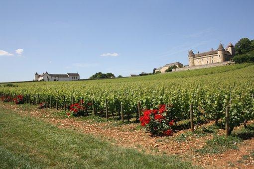 Burgundy, Vineyard, Castle