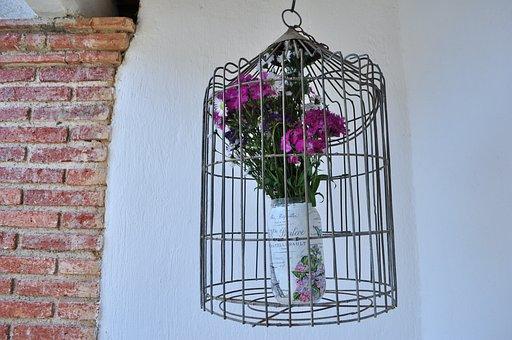 Cage, Flowers, Bricks, Decoration