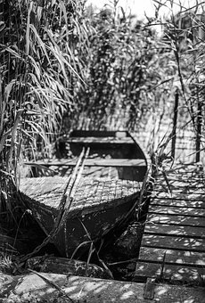 Rowboat, Reed, Lake, Boat, Water, Nature, Fishing