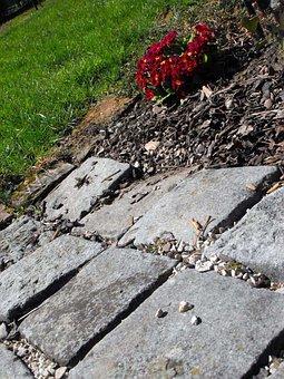 Walkway, Garden, Flowers, Bark