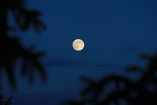 Moon, Night, Full, Dark, Sky, Lunar
