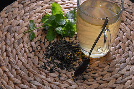 Tea, Mint, Herbs, Cup, Aromatic, Plant, Foliage
