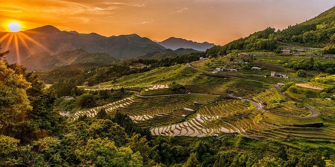 Landscape, Sunset, Rice Terraces, Tradition