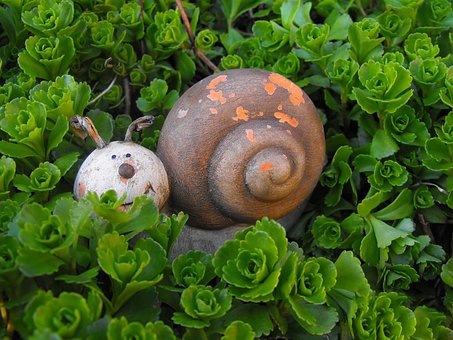 Snail, The Statue Of, The Statue Of The, Decor, Garden