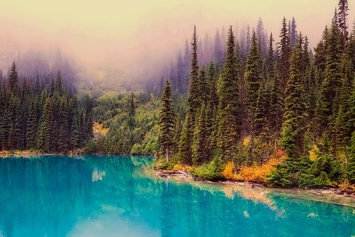 Canada, Lake, Water, Reflections, Forest, Trees, Woods