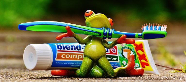 Toothpaste, Frog, Toothbrush, Brushing Teeth, Hygiene