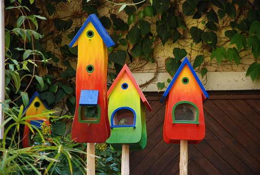 Colorful, Bird Feeder, Nesting Box, Colored, Color