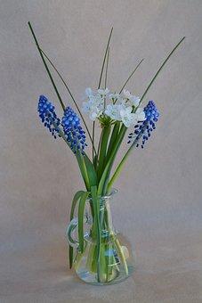 Flowers, Vase, Flower Vase, Glass Vase, Spring Flowers