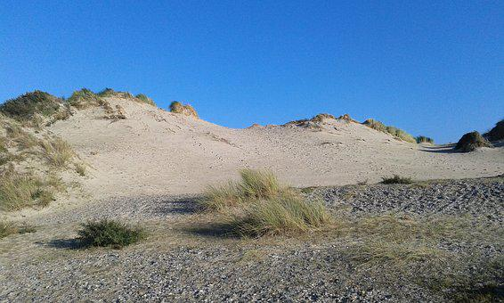 Dune, Holiday, Wild