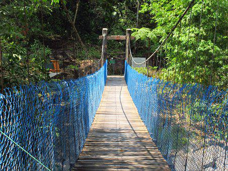 Canopy Walk, Bridge, Bridge Walk