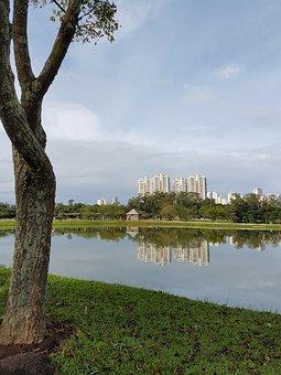 Park, Sunday, Brazil, Mogi