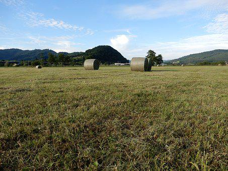 Round Bales, Pasture, Agriculture, Sky, Blue, Green