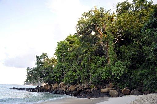 Lagoon, Sea, Side, Holiday, Beach, Sand, Ocean, Ile
