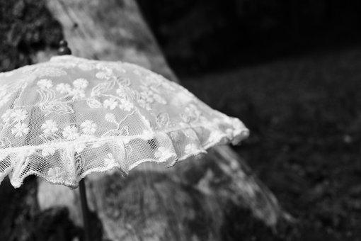 Parasol, Umbrella, Summer, Sun